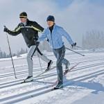 Техника лыжного хода