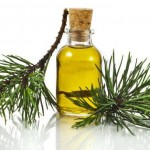 Пихтовое масло: лечебные свойства и противопоказания