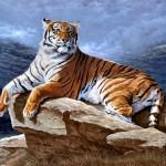 Как нарисовать тигра?