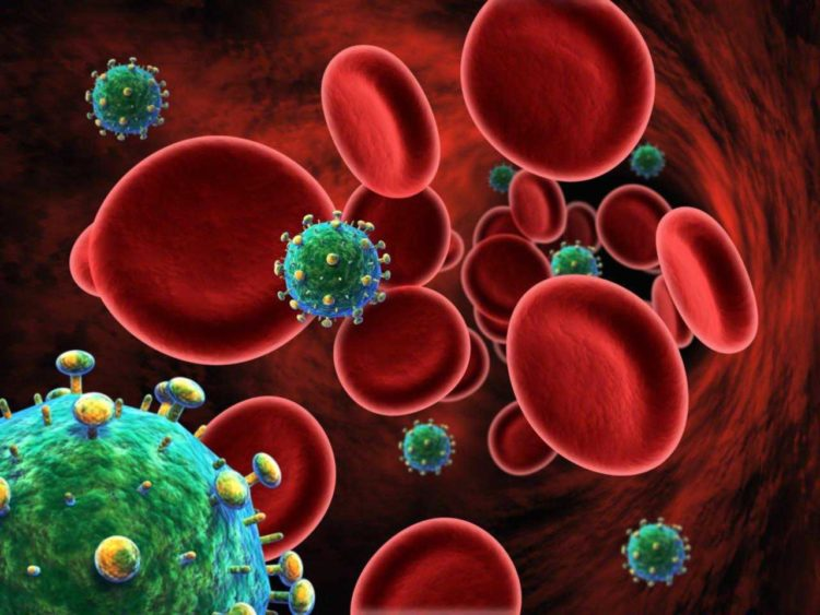 Как долго живут бактерии вич