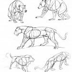 Как рисовать животных?