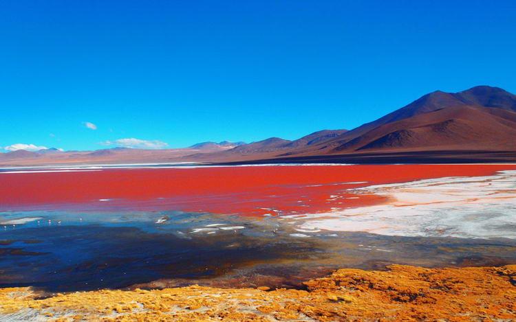 Лагуна Колорадо, Боливия.