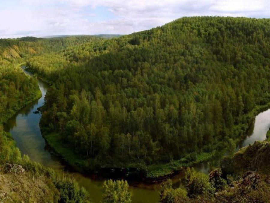Бердские скалы и гора Зверобой