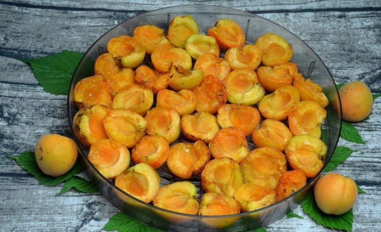 Как засушить абрикосы в домашних условиях на зиму 199