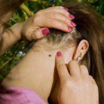 Как уберечь ребёнка от укуса клеща (+ видео)