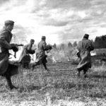 Сколько людей погибло в великой отечественной войне?
