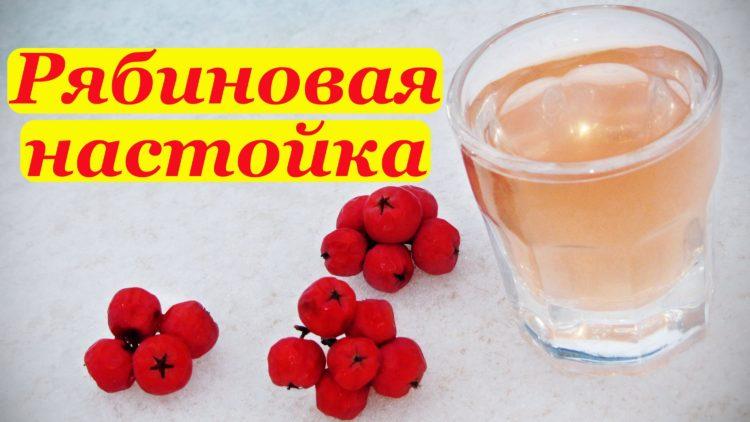 Красная рябина рецепты наливка в домашних условиях 974