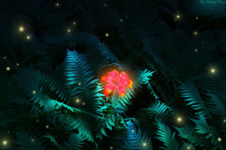Символ папоротника, Цветок папоротника, Перунов цвет - О чем говорят легенды, как выглядит знак, магические свойства, использование оберега