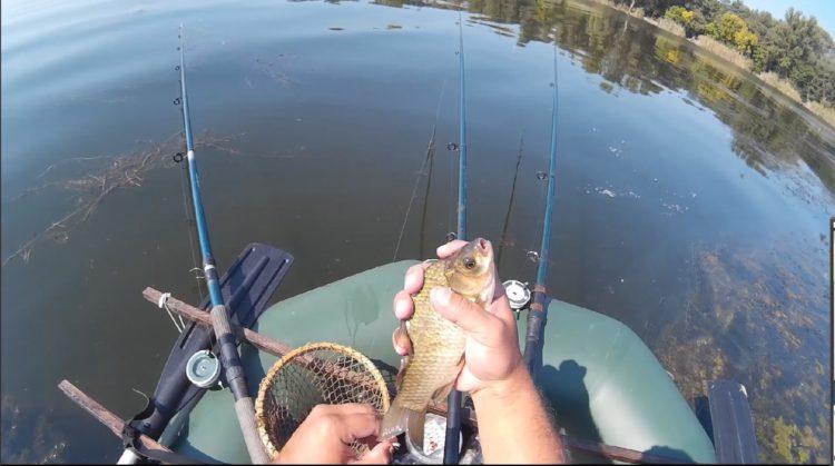 карп с лодки ловля видео