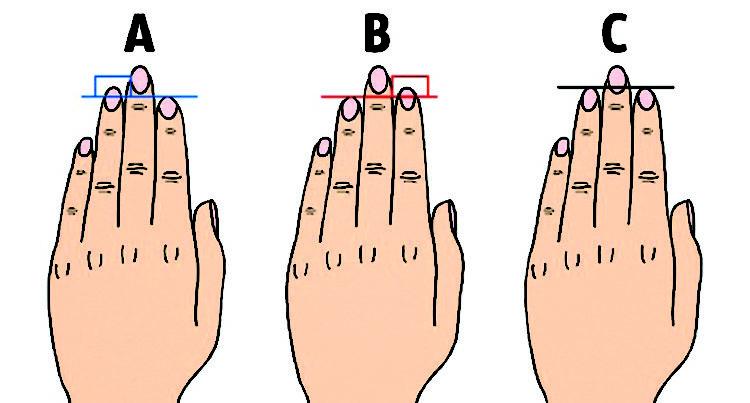 Безымянные пальцы длиннее указательных